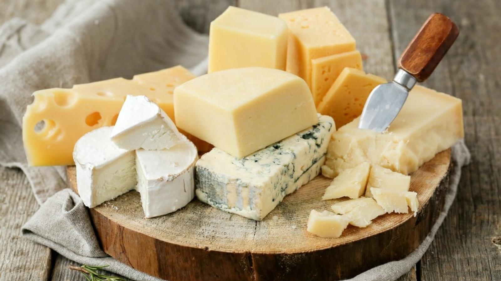 Os melhore queijos